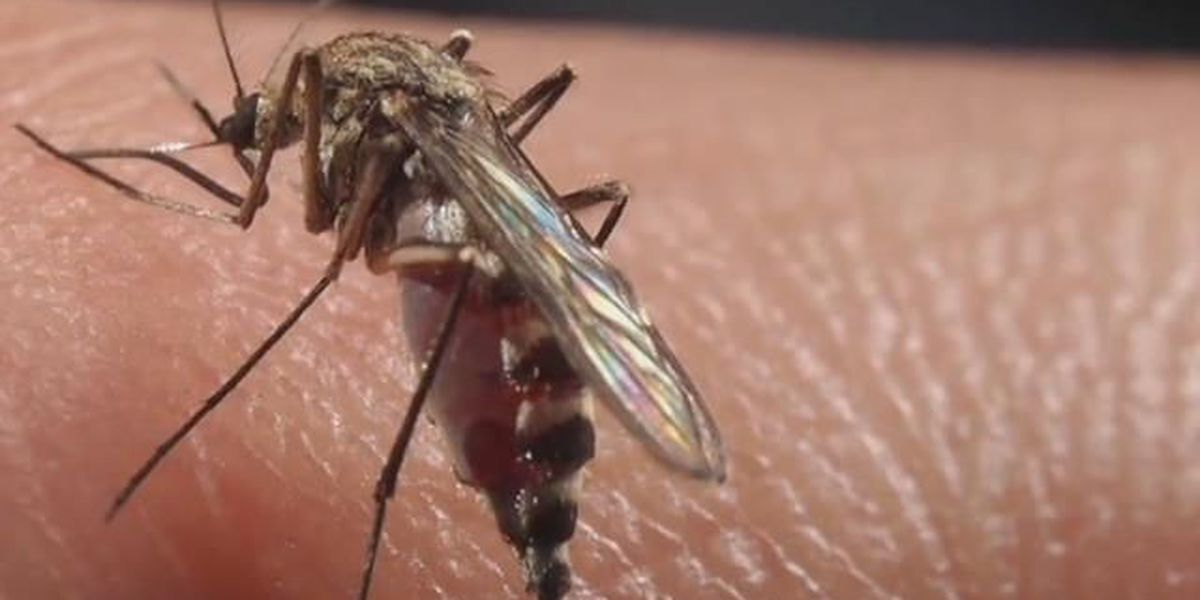 West Nile Virus season wrapping up, still a concern