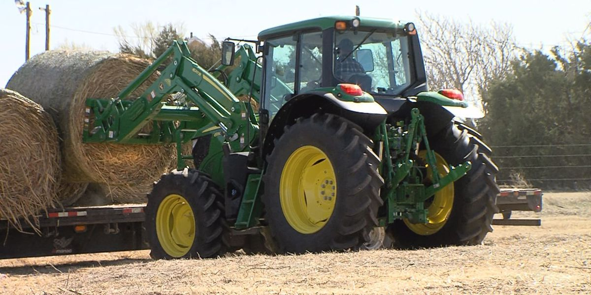Agrilife to ranchers: Don't be reluctant to pick up hay