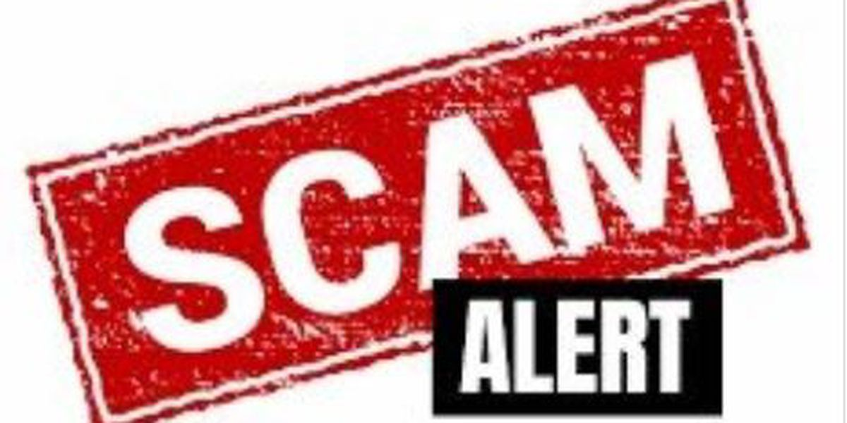 Xcel Energy warns of disconnect scams