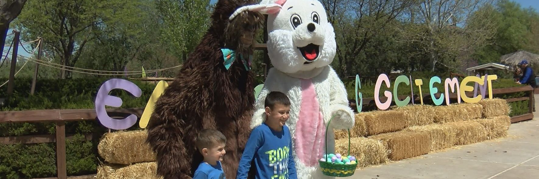 Egg-citing Easter activities in Amarillo