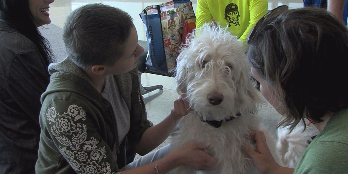 Local teen with PTSD to receive service dog