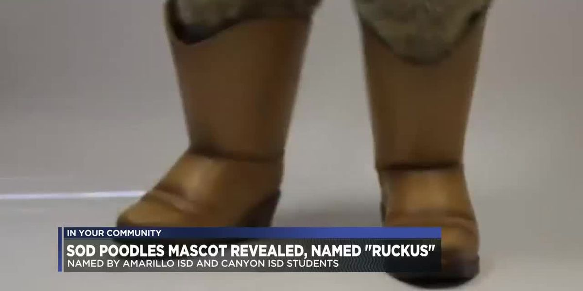 'Ruckus' revealed as name of new Sod Poodles mascot