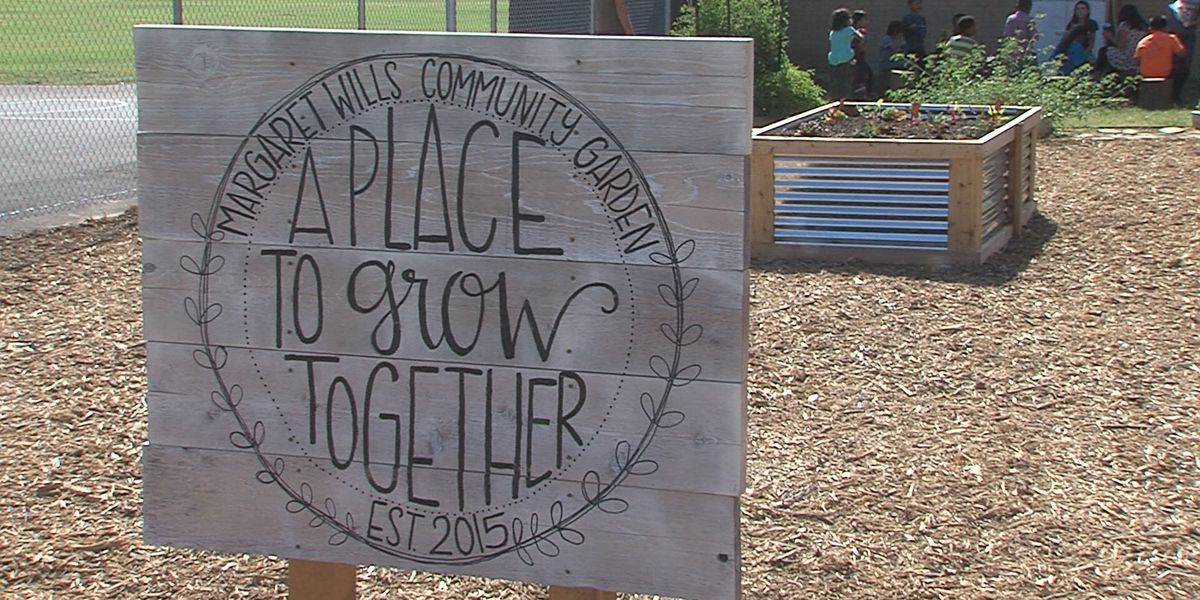 New gardening program becomes outreach for refugee and low-income families