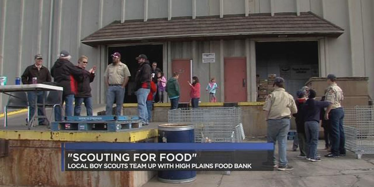 'Scouting for Food' raises thousands of food donations