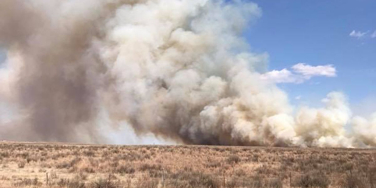 Fires in Hemphill, Quay Counties under control