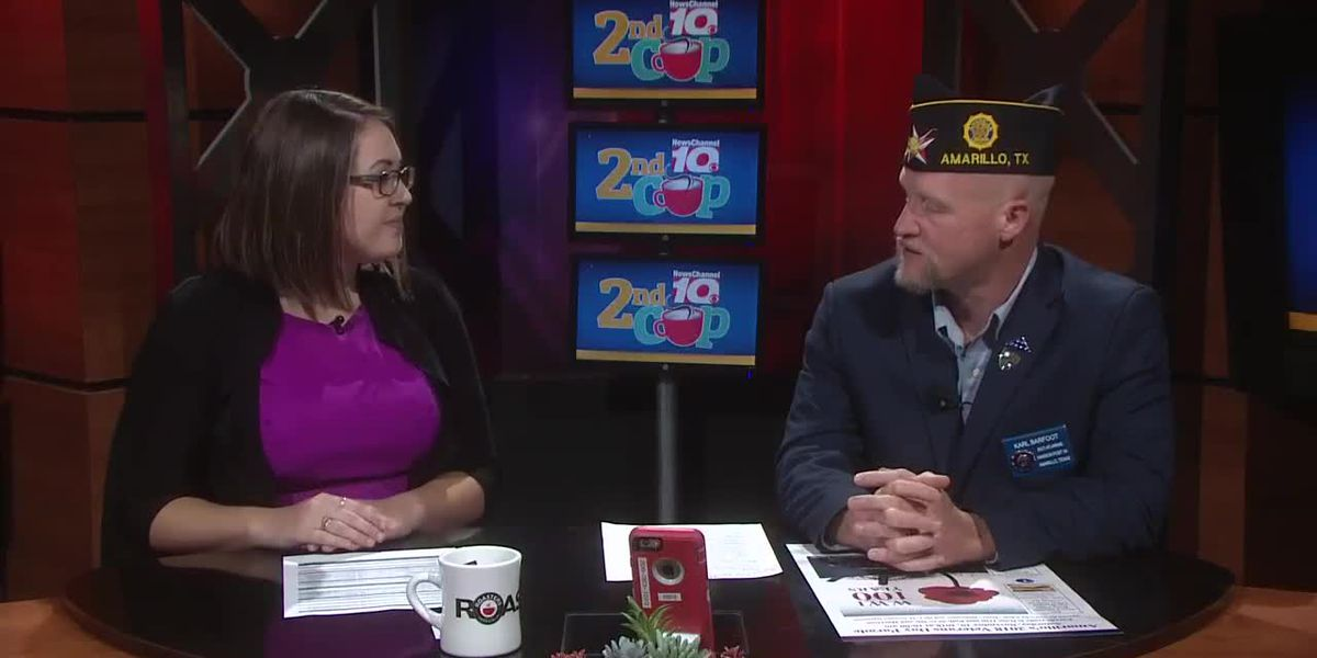 Interview - Veteran's Day Parade
