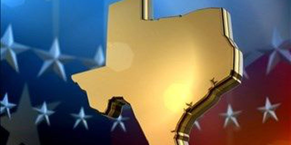 Texas - Election results for November 4, 2014