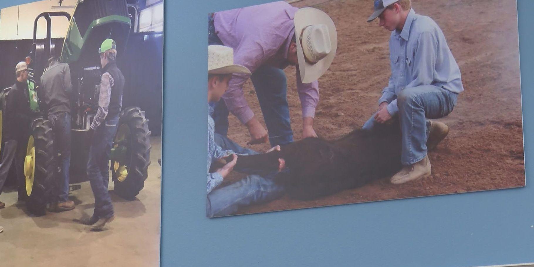 Wildorado High School students develop cattle company