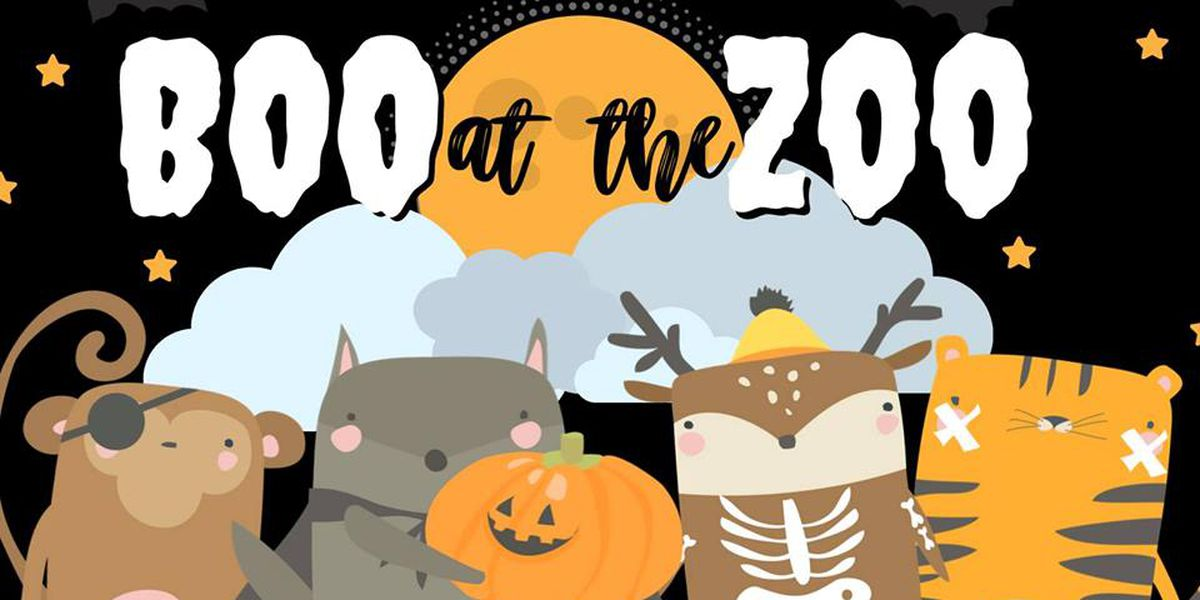 Deadline approaching for Boo at the Zoo volunteer sign up