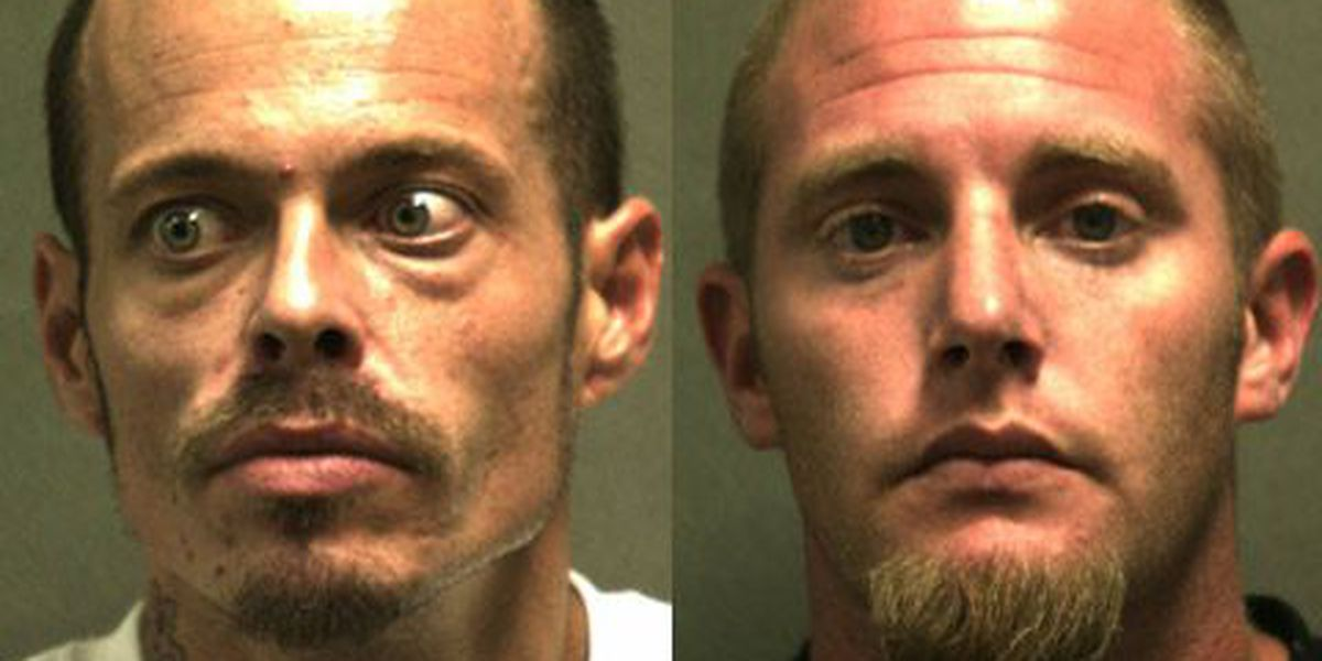 Police discover drugs and stolen weapons after making warrant arrest