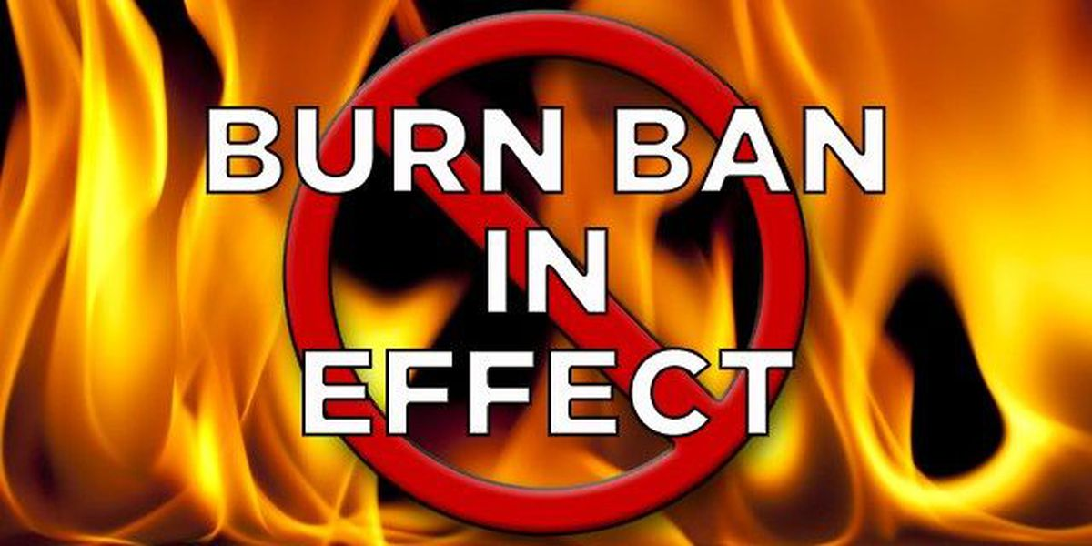 Randall County County Commissioner's passed county-wide 90 day burn ban order