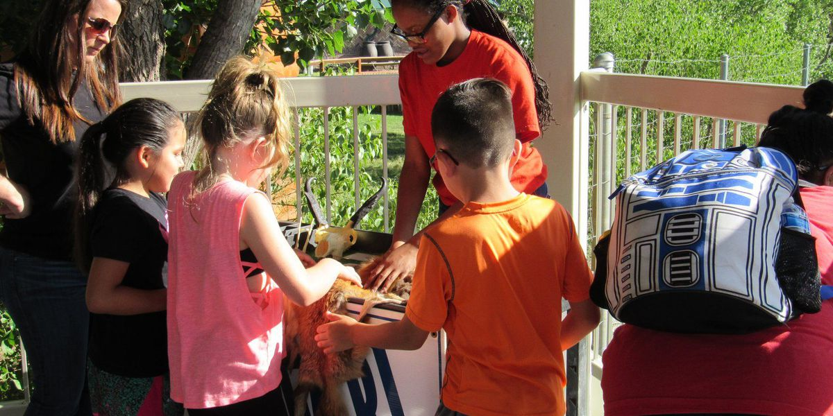 Amarillo Zoo allowing families to 'check out' zoo pass from Amarillo Public Library