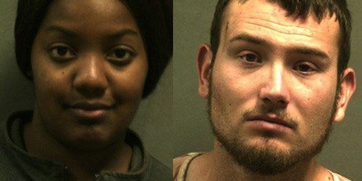 Two arrested in auto theft chase