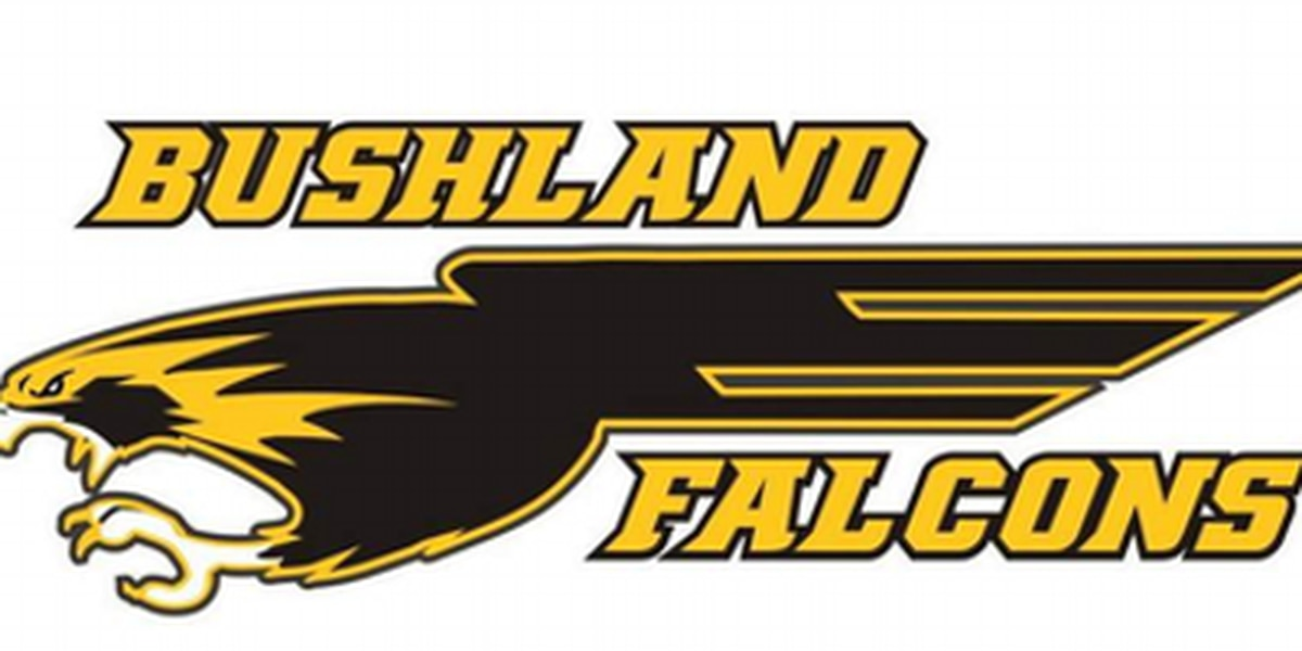 Team of the Week: Bushland Falcons