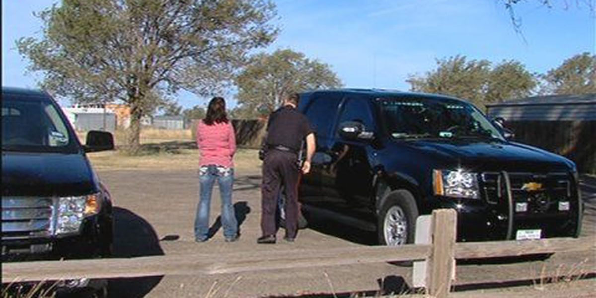 Fritch mother arrested for facebook threat