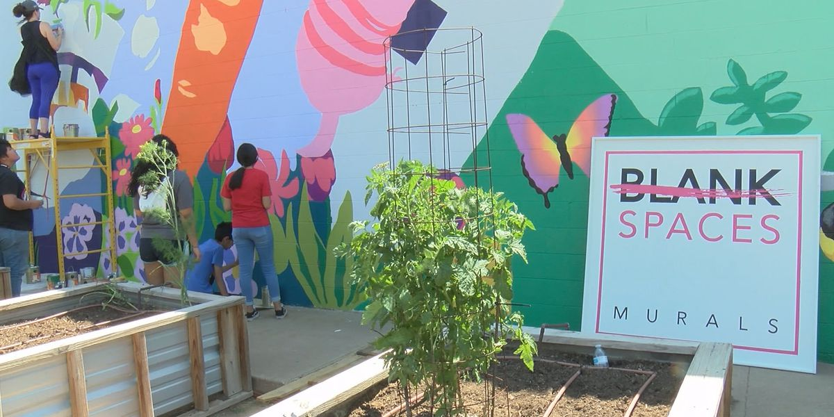 Cargill volunteers, donation support Hope Garden and San Jacinto Beautification Project