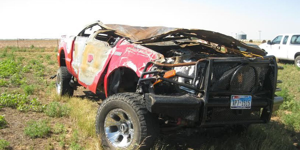 Controversial cow-involved car wreck ends in verdict of $8.9 million