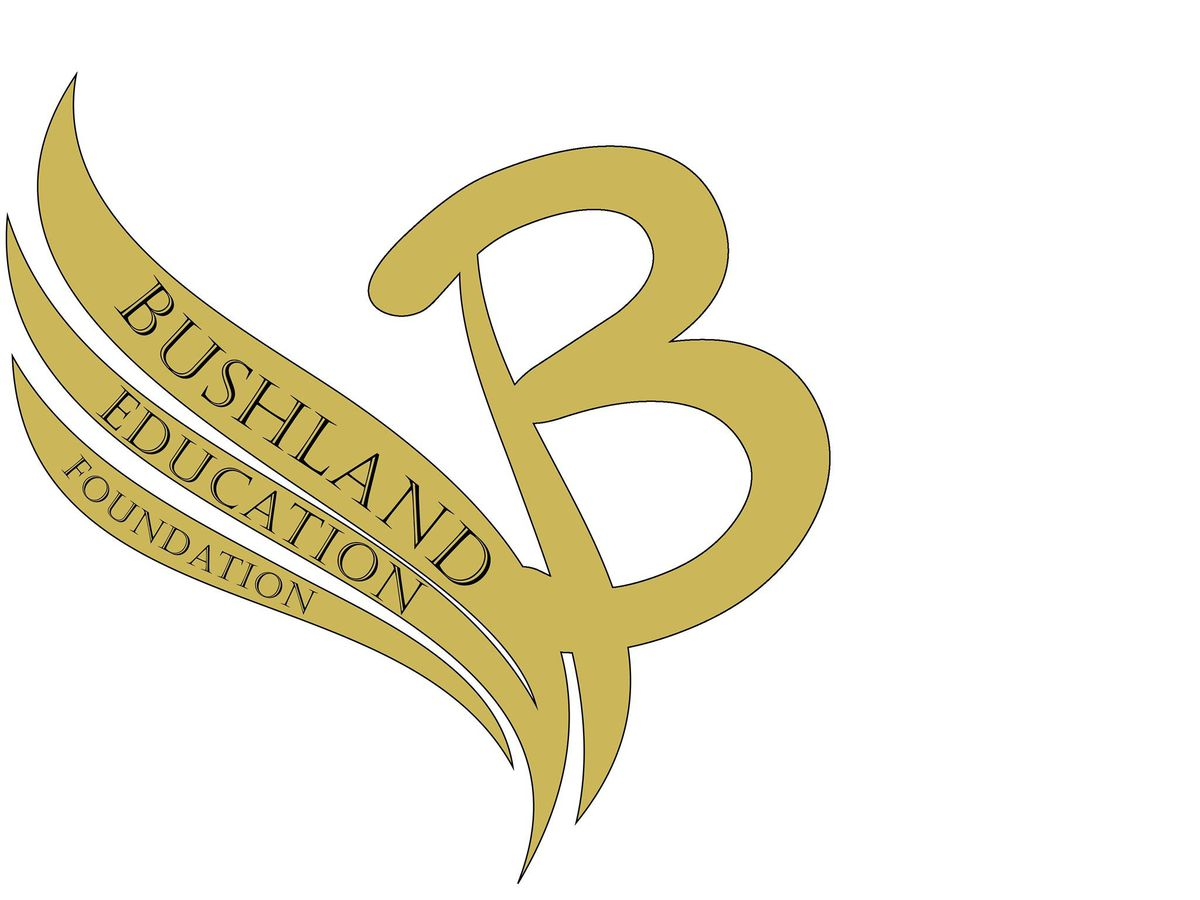 Bushland Education Foundation to grant $5,000 to 6 teachers