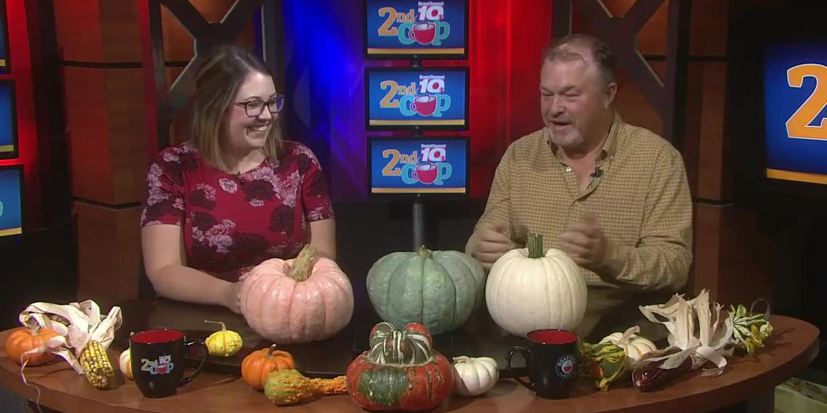 DIY: Greg Lusk tells you all you need to know about pumpkins