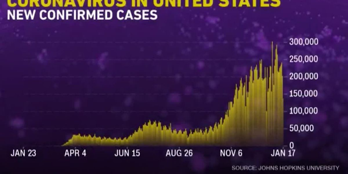 US death toll from COVID-19 could reach 500,000 by mid-February