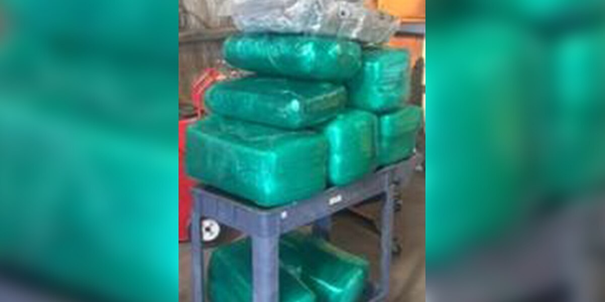 Nearly 200 pounds of marijuana seized during traffic stop