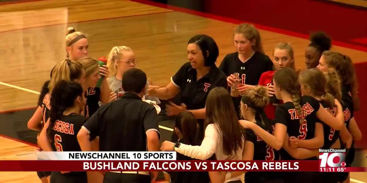 Volleyball: Bushland at Tascosa