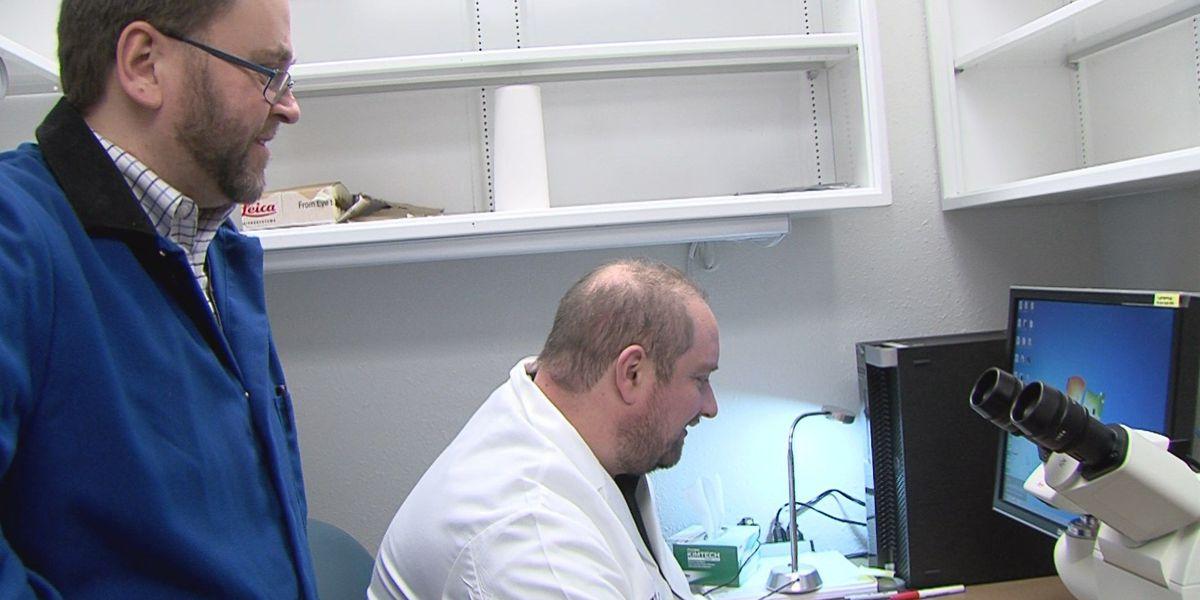 Amarillo researchers making progress toward treating neurodegenerative diseases