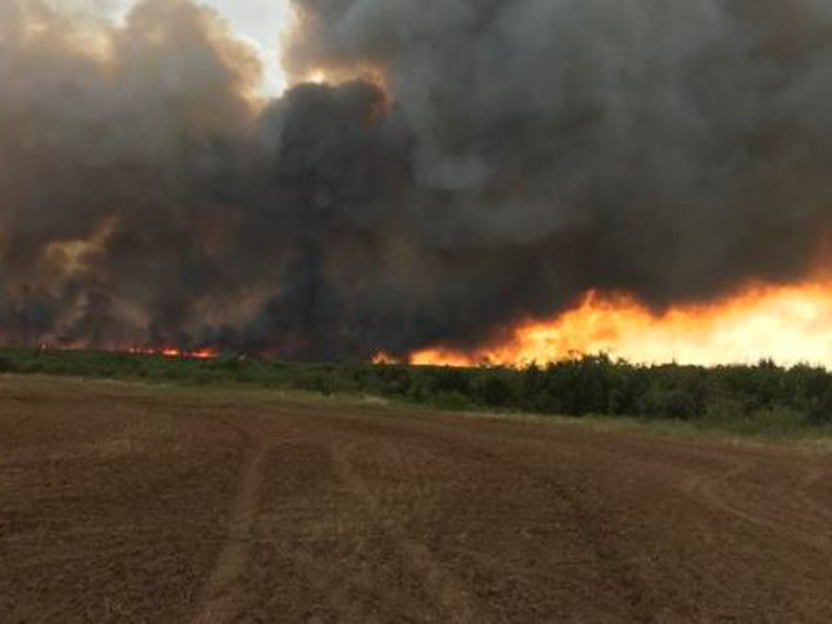 Area fire crews battle range fires in Hardeman County, Cottle County