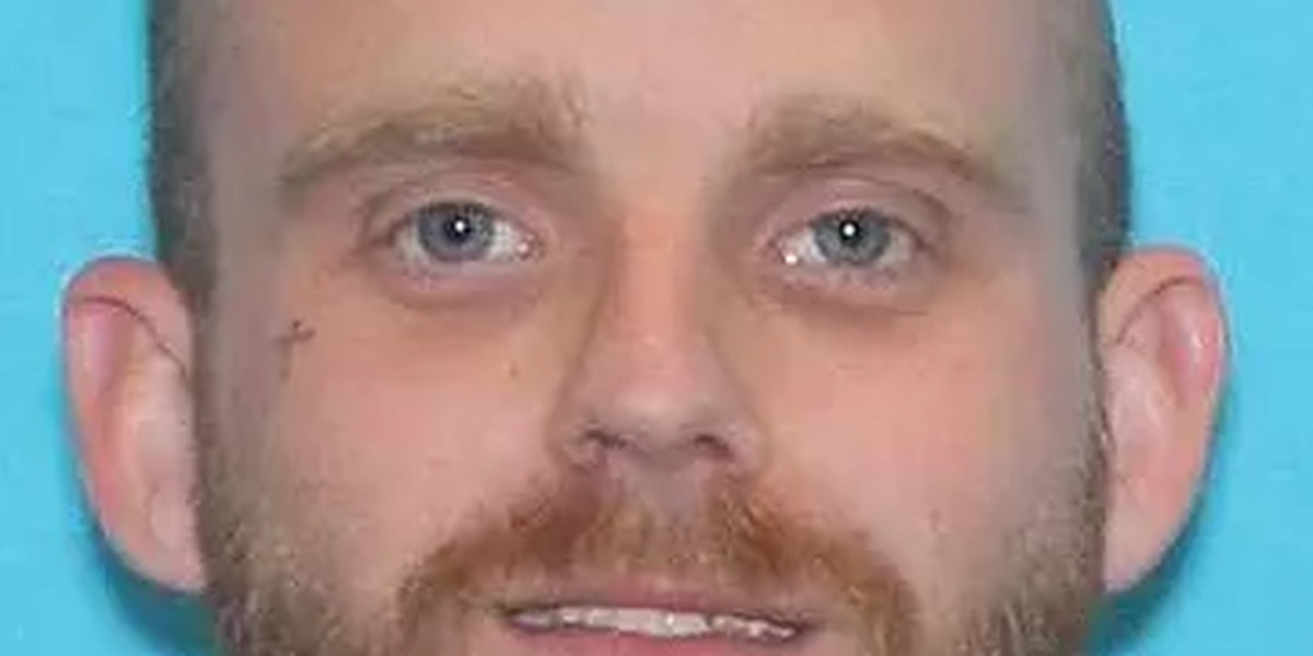 Man accused of burglarizing Randall County home in police custody