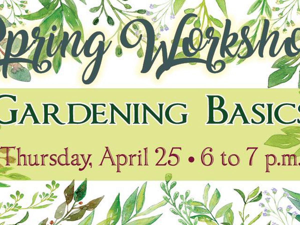 High Plains Food Bank hosting Gardening Basics workshop