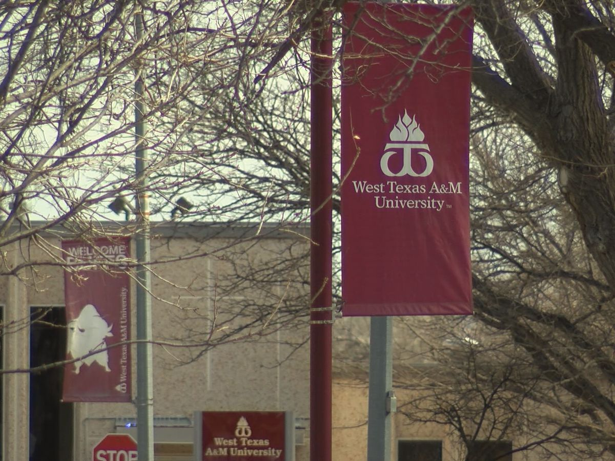 WTAMU's online bachelor's program ranked #1 in state