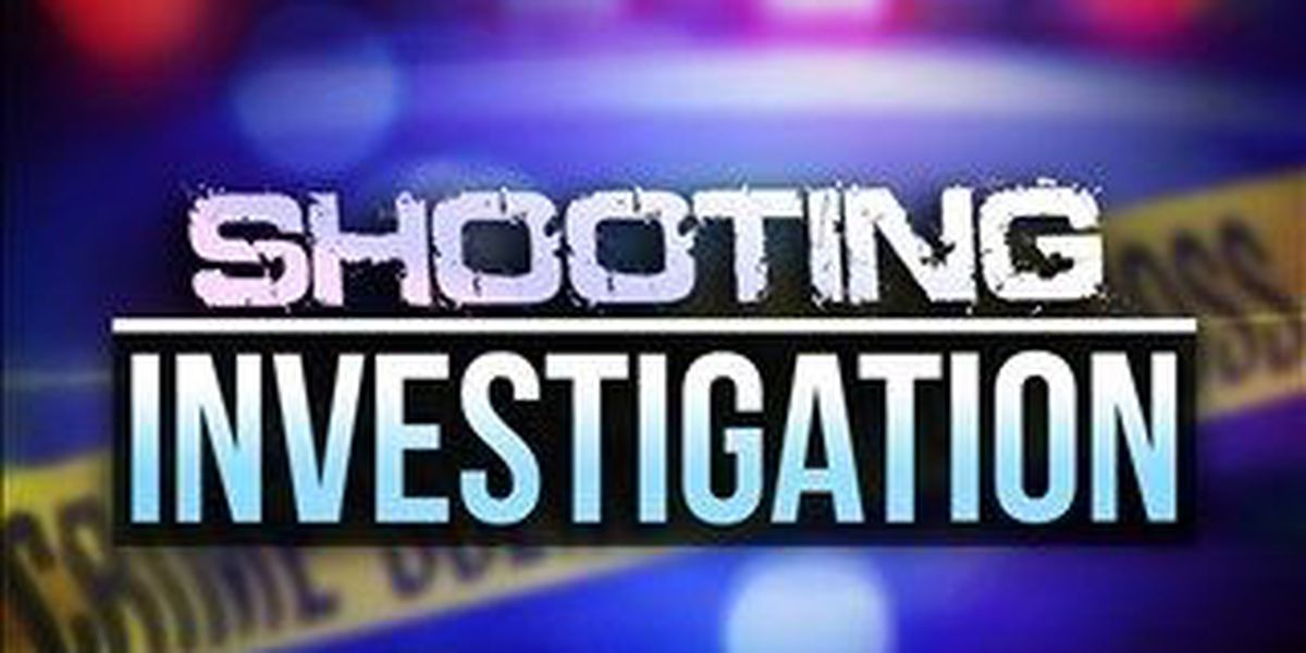 Police: Man shot during domestic disturbance call