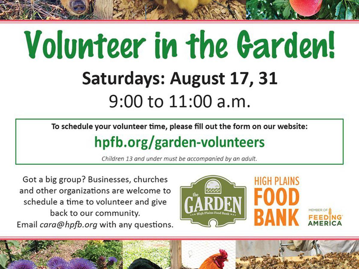 Volunteers needed for Saturdays at the HPFB's garden