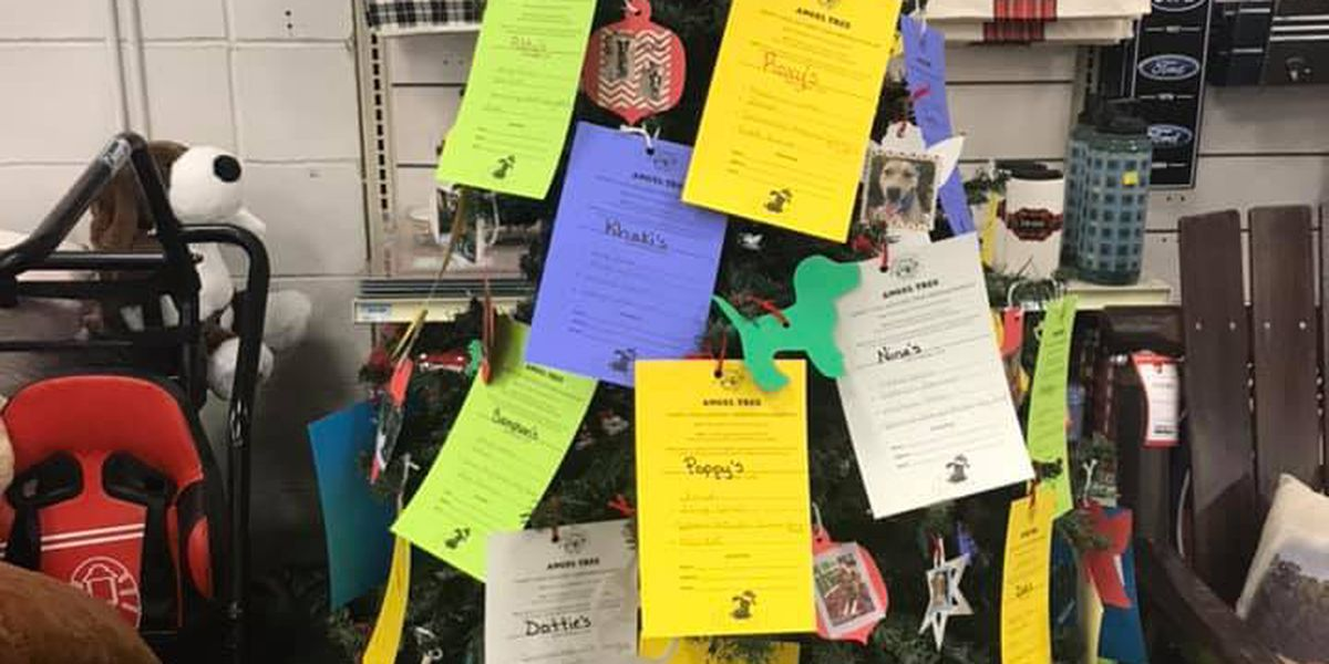 Help Panhandle Paws of Hope gives dogs a new life with their Angel Tree