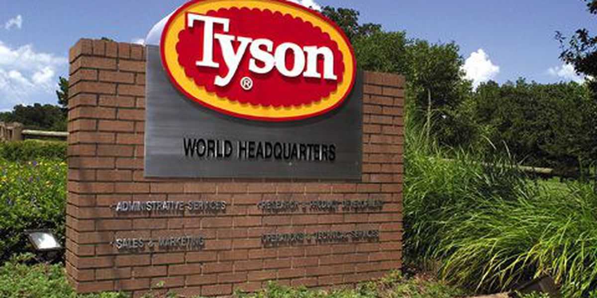 Tyson Foods recalls 33K pounds of chicken product